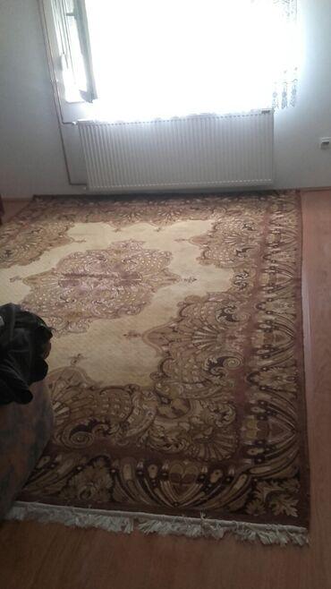 Ostalo za kuću | Sabac: Na prodaju tepih širine 245cm i dužine 340cm.Kontakt tel Šabac