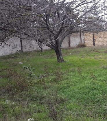 Недвижимость - Сарай: Продам 5 соток Строительство риелтор