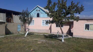 индюки биг 6 купить яйцо в Кыргызстан: Продаётся жилой дом г.Талас. Цена договорная