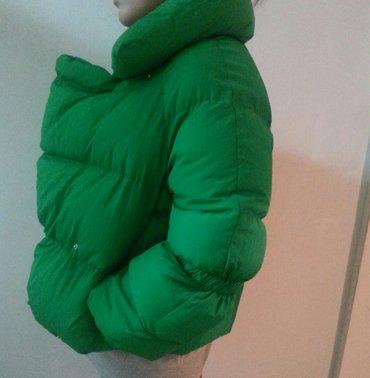 Весенняя яркая куртка (новая, носила только 1раз) в Лебединовка
