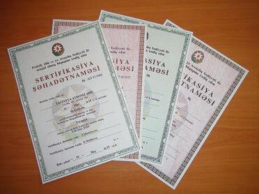 вакансии ассистента стоматолога в Азербайджан: Стоматолог. 3-5 лет опыта. Аренда места. Апшерон р-н