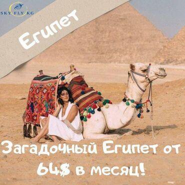 309 объявлений: Туры в Египет, путевки в Египет на двоих в РАССРОЧКУ!Туры в Египет от