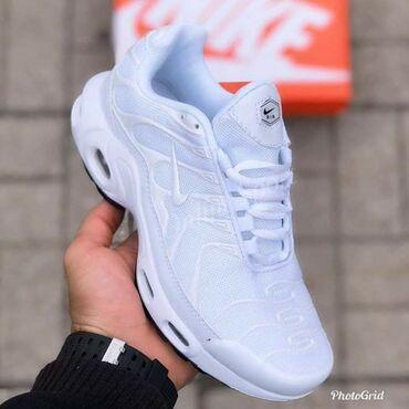 Muška odeća | Kikinda: Nike TN  3.700 Za dostupni brojevi pitajte