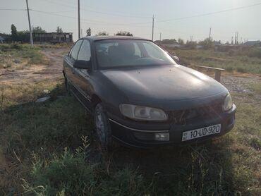 Opel Azərbaycanda: Opel Omega 2.5 l. 1994 | 200876 km