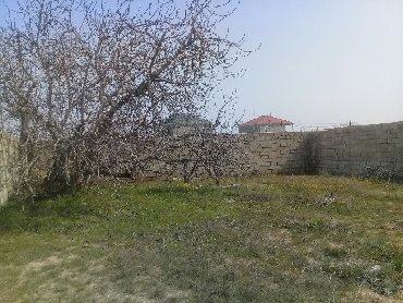 torpaq - Azərbaycan: Satış 10 sot mülkiyyətçidən