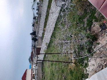 Torpaq sahələrinin satışı 12 sot Mülkiyyətçi, Kupça (Çıxarış)