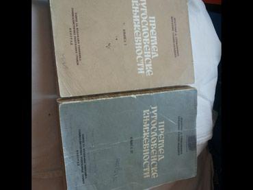 Knjige istorija jugoslovenske književnosti. Cena za jednu je 250 - Kragujevac
