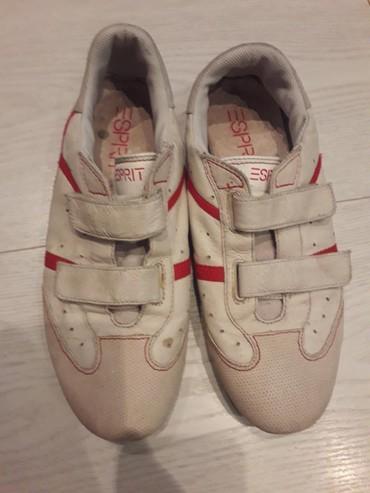 Ženska patike i atletske cipele   Beocin: Ocuvane patike esprit br 40