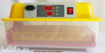 Sumqayıt şəhərində 32 yumurtalıq tam avtomatik İnkubator (cücə çıxaran aparat ) tam yen