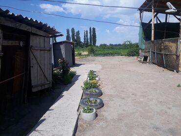 Недвижимость - Буденовка: Продаю дом очень хороший большой 10 комнат со всеми условиями в одним