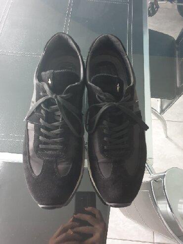 Paciotti - Srbija: Original Paciotti cipele, broj 8, odgovara broju 43. Nosene ali u
