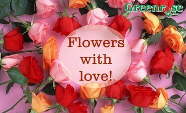 Цветы для любимых!!! 100% свежие,большой выбор,доставка по Бишкеку!!! в Бишкек