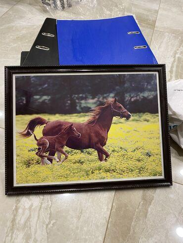 Декор для дома - Лебединовка: Красивая картинка лошади ! Формат 50 на 60
