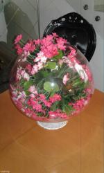 Очаровательный уголочек красоты- ваза в Бишкек