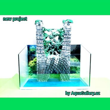bmw 3 серия 316ti mt - Azərbaycan: Aquarium. Exclusive by aquagallery.Az new project , treasure