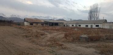 Недвижимость - Боконбаево: 32 соток, Для бизнеса, | Электричество