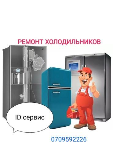 Ремонт холодильников , морозильников  в Лебединовка