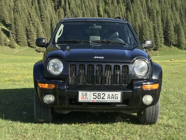 Jeep Liberty 2.8 л. 2003   228000 км