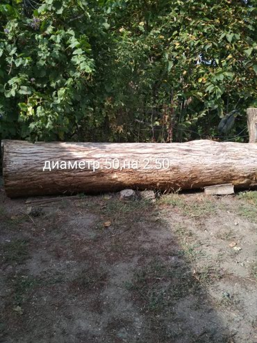 Продаю дуб. в Кант