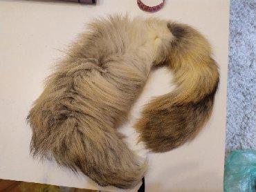 Jakne-za - Srbija: Krzno za jakne i kapute, prirodno, jedan krak krzna je malo deblji od