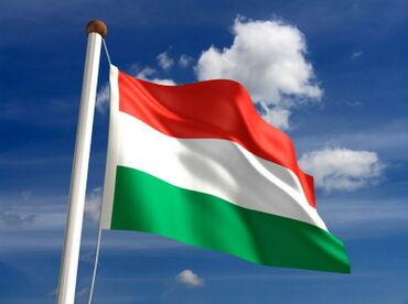 Obuka i časovi - Srbija: Online časovi mađarskog jezikaProfesor mađarskog jezika i vlasnik