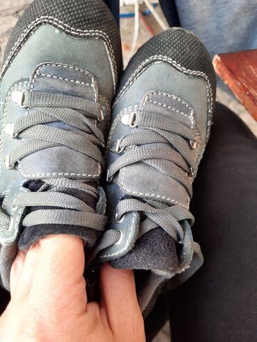 Dečija odeća i obuća - Gornji Milanovac: Kozne cipele Polino vel 26 Bez ostecenja  Kao nove