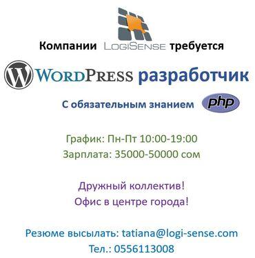 программист-php в Кыргызстан: Требуется опытный Wordpress разработчик со знанием PHP.Обязательное