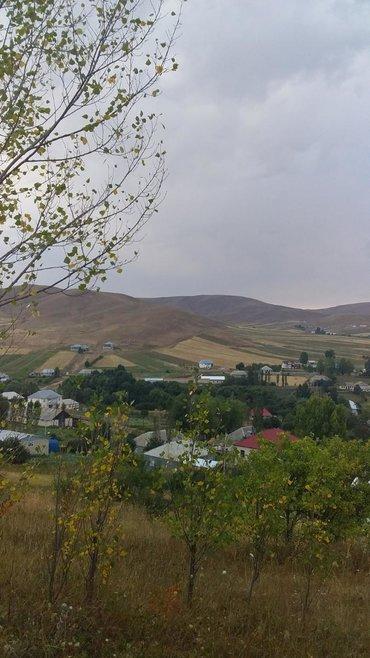 вытяжка встраиваемая в шкаф 50 в Азербайджан: Продам 50 соток Для строительства