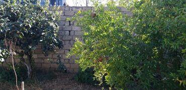 Bak - Azərbaycan: Gorduyuniz ev savalan qesebesidir ev 4 sotun icerisindedir yam temirli