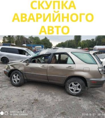 toyota techstream в Кыргызстан: Toyota RR