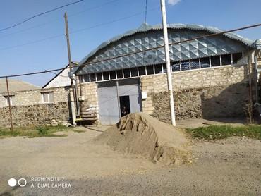 Zavod və fabriklər - Azərbaycan: Unvan goygol rayonu qusqara kendi semedli qesebesi Gence qazax sotesin