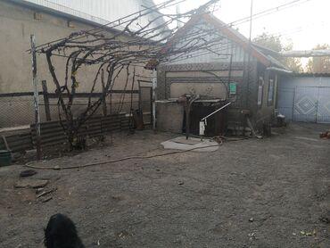 продам дом в токмаке в Кыргызстан: Продам Дом 120 кв. м, 5 комнат