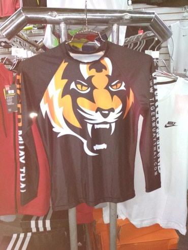 Tiger muay thaiрашгарды в Бишкек