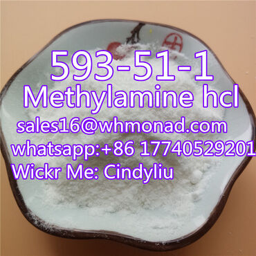 Methylamine hydrochloride powder of CAS 593-51-1 with best price and