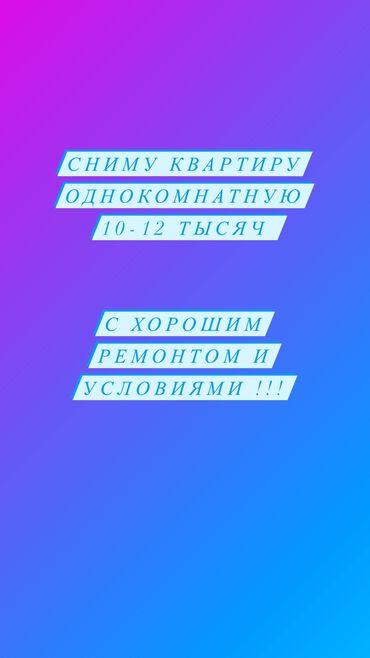 мама мама в Кыргызстан: Район политех Азия Молл 6-8-10-11-12 Юг 2 тунгуч  Будем жить с котом