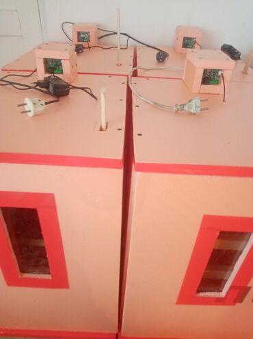 Животные - Нарын: Инкубарот сатылат полу автомат 90-110 жумуртка батат
