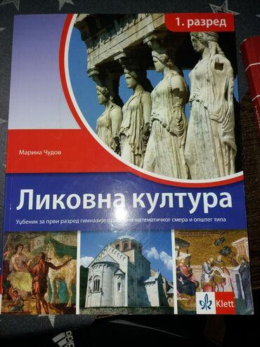 Knjige, časopisi, CD i DVD | Sabac: Likovna kultura udzbenik za prvi razred gimnazije prirodno