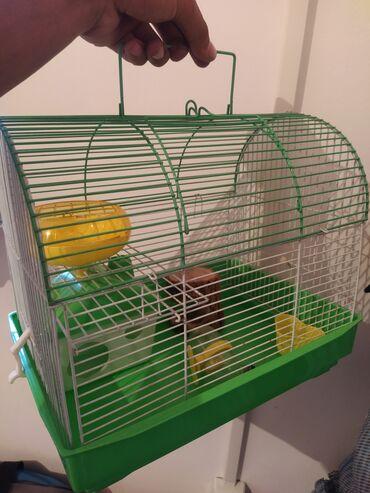 Животные - Ала-Тоо: Продаю дом для хомяков Большой - 1000 сом Маленький - 600 сом