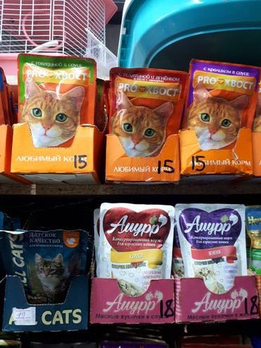 Консервы для кошек от 65сом. паучи от 13сом в Бишкек