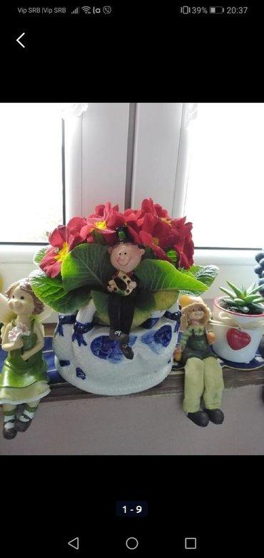 Saksije za cveće, više vrsta na nasem oglasu