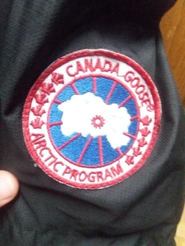 Muška odeća | Pirot: Canada goose jakne perjane ORIGINALjakne su original u velicinama M i