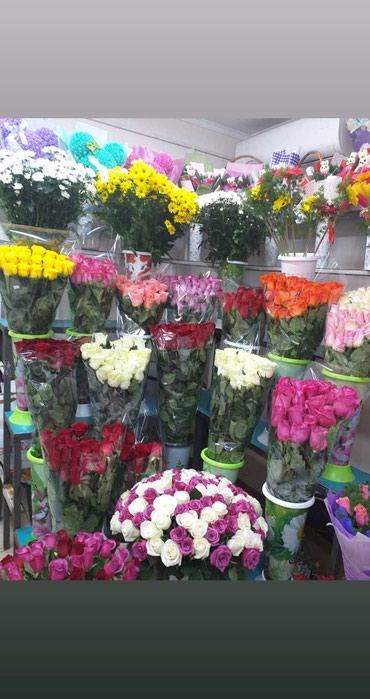 Развлечения в Кыргызстан: Мальчики успейте к нам за цветами,ведь только у Согдианы всё дёшево и