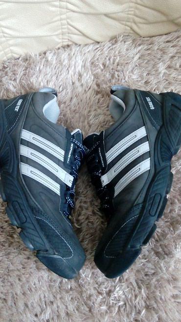 Adidas cipele - Srbija: Prodajem adidas goretex patike/cipele.Odlicno ocuvane.Br.38