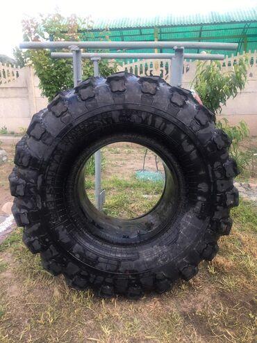 Срочно продаю шину покрышку с камерой камаз грузовой трактор комбайн с