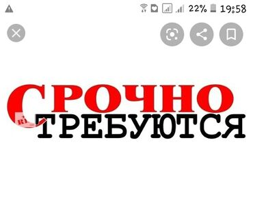 bez zhestkogo diska в Кыргызстан: Ош шаарында туруктуу жумуш берилет жаш чектелбейт айлык акы жогору 180