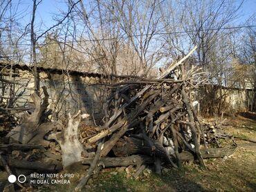 Продаю дрова ОТУН САТЫЛАТ