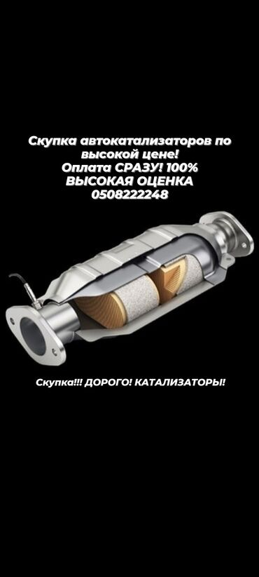 Девушка по вызов ош - Кыргызстан: Катализатор !!! Скупка!!! Скупка катализаторов!!!!! Дорого!!! Высокая