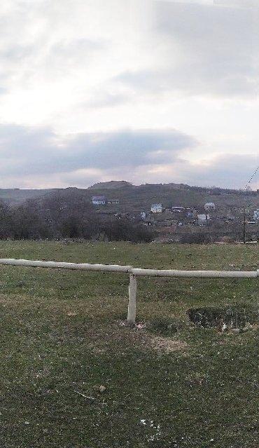 Daşınmaz əmlak Şəmkirda: Satış 15 sot Kənd təsərrüfatı mülkiyyətçidən
