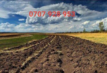 жер в Кыргызстан: Продажа участков 200 соток Для сельского хозяйства, Собственник, Тех паспорт