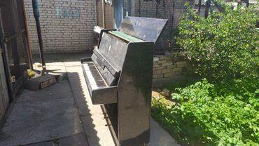 пианино-чайка в Кыргызстан: Пианино, фортепиано